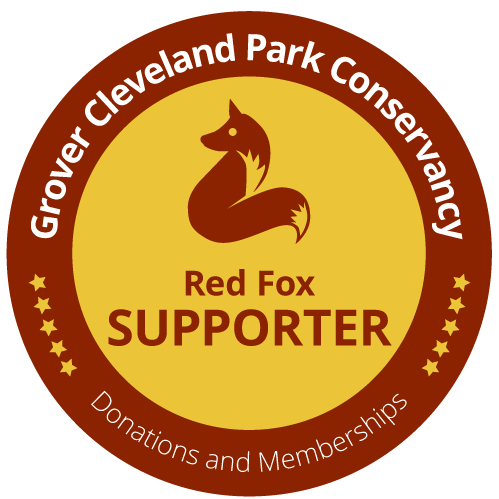 Red Fox Donor