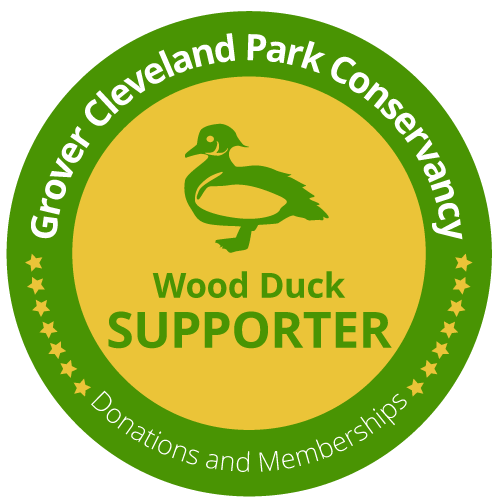 Wood Duck Donor